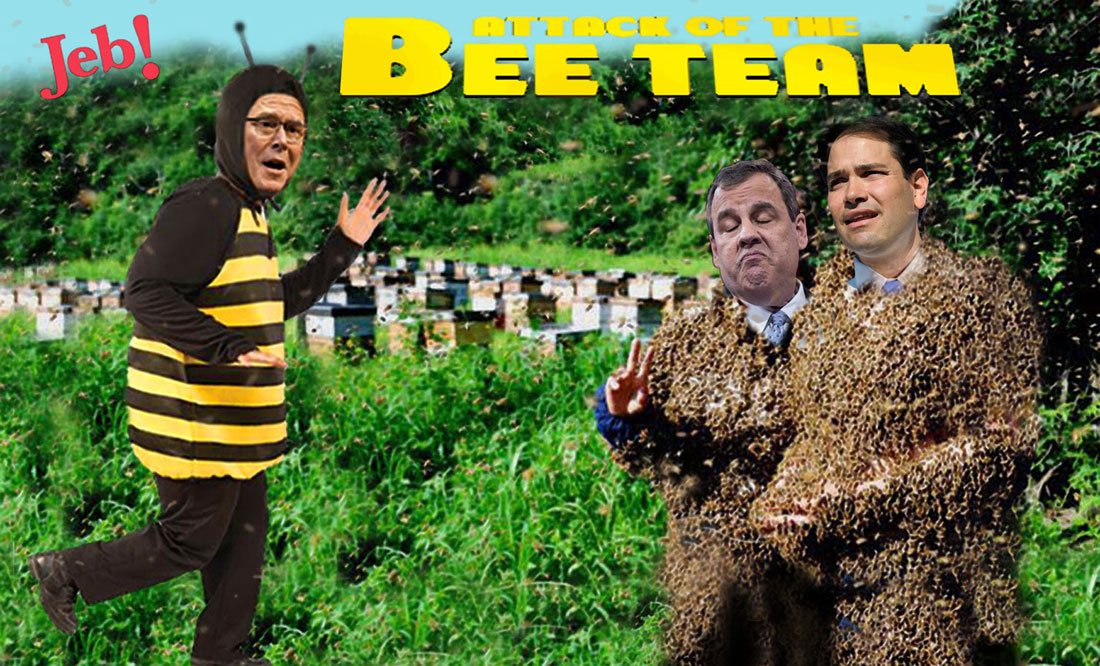 ATTACK OF THE BEE TEAM