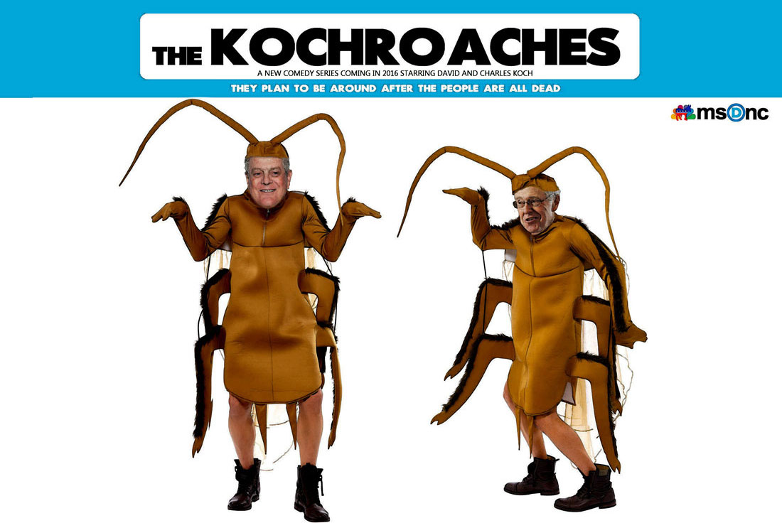 THE KOCHROACHES
