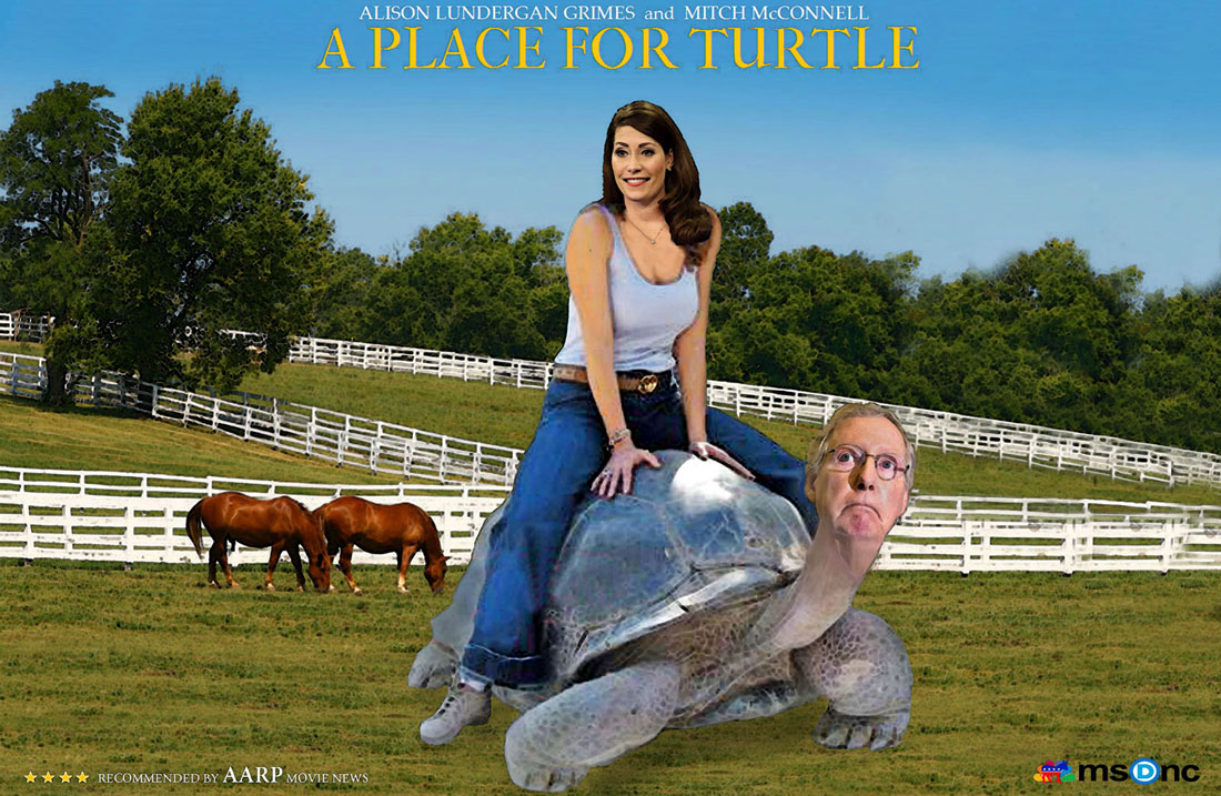 A PLACE FOR TURTLE