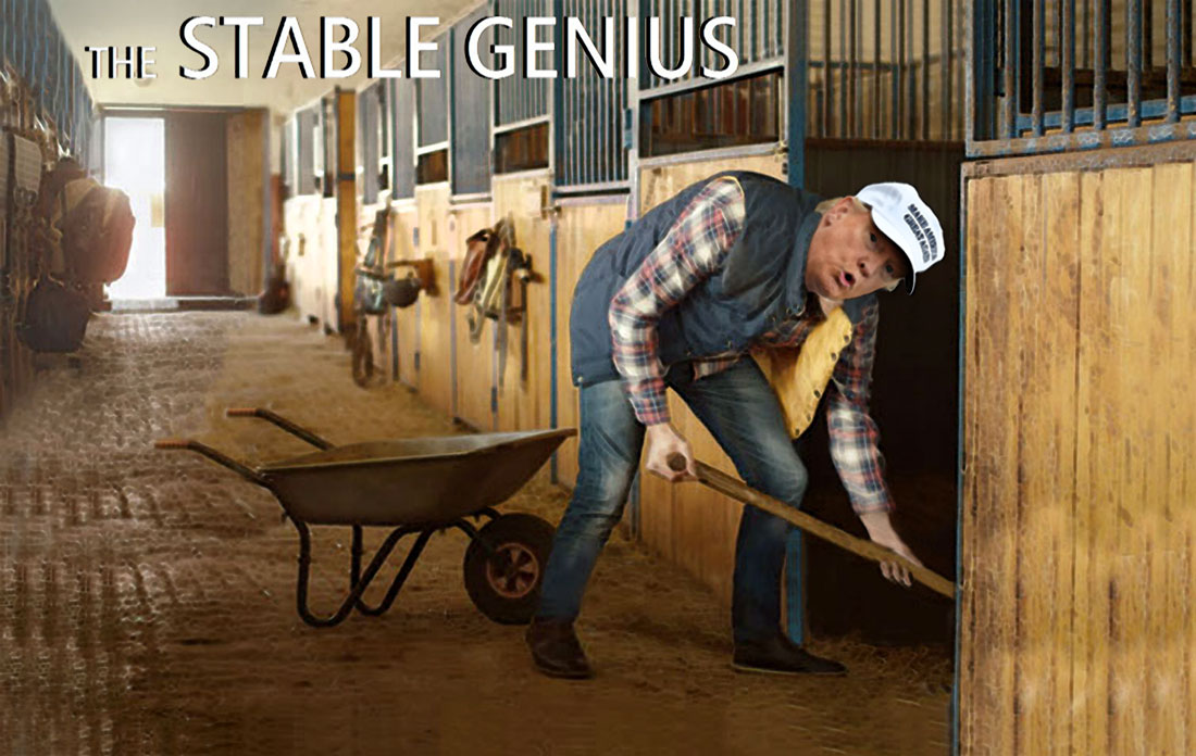 THE STABLE GENIUS