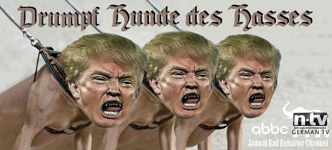 DRUMPF HUNDE DES HASSES - TRUMP HOUNDS OF HATE